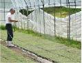 雑穀農園3